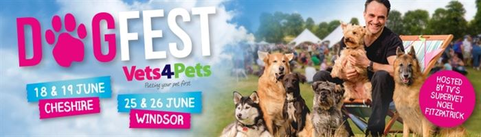 DogFest is the UK's Summer Festival for Dogs