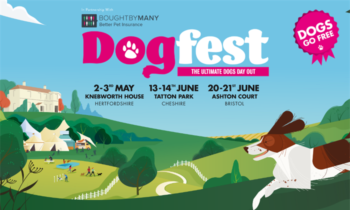 Dog Days Of Summer 2020.Dogfest Returns In Summer 2020 See Tickets