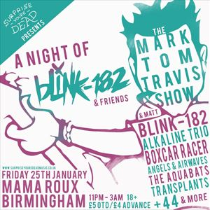 A Night Of Blink 182
