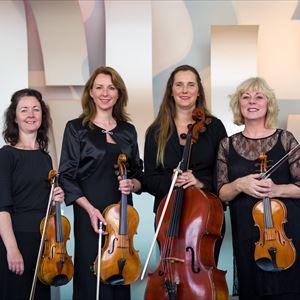 Acceso String Quartet Recital & Wine Tasting