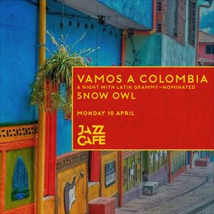 An Evening In Columbia With Snow Owl