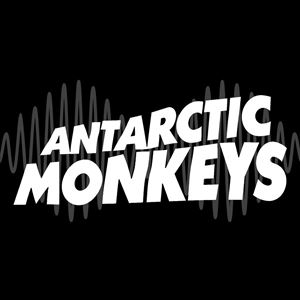 Antarctic Monkeys - A Tribute to Arctic Monkeys