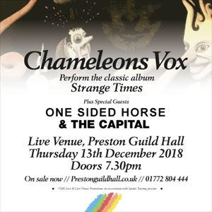 Chameleons Vox | Strange Times