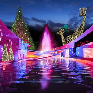London Zoo At Christmas.Christmas At London Zoo Tickets And Dates 2025 See Tickets