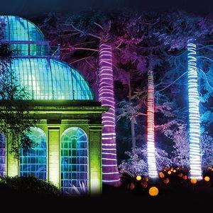 Christmas at The Botanics - Off Peak
