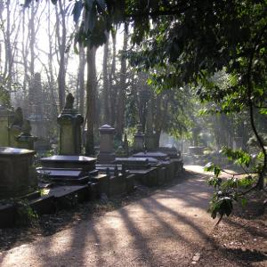 Coach + Highgate Cemetery - South Essex