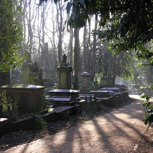 Coach + Highgate Cemetery Tour - South Essex
