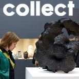 COLLECT 2013