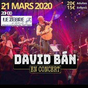 DAVID BAN en concert