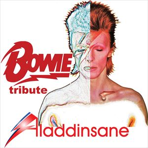 David Bowie tribute band Aladdinsane Live On Stage