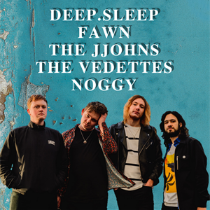 Deep.Sleep/Fawn/The Jjohns/The Vedettes/Noggy