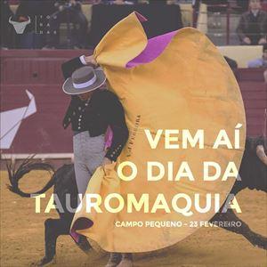 Dia Da Tauromaquia - Festival Taurino