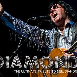 Diamond - Neil Diamond Story