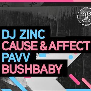 DJ Zinc & Cause & Affect