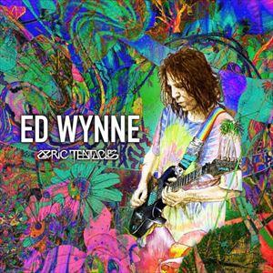 Ed Wynne (Ozric Tentacles)