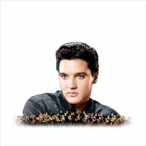 Elvis In Concert - Live On Screen