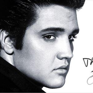 Elvis (Trevor Chaplain Smith)