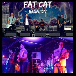 Fat Cat Reunion