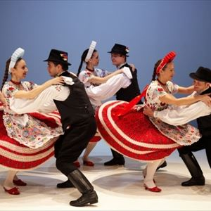 Hungarian Folk Performance