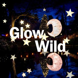 Glow Wild Tickets and Dates 2019 | See Tickets