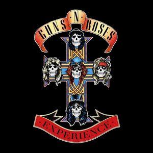 The Guns N Roses Experience - Milton Keynes