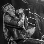 Guns N Roses Experience