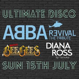 Ultimate Disco Sunday at Hale Barns Carnival