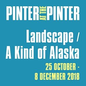 Landascape / A Kind of Alaska