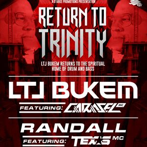LTJ Bukem - Return To Trinity