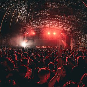 Mint Festival 2020