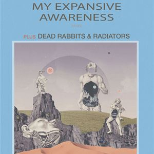 My Expansive Awareness, Dead Rabbits and Radiators