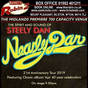 Nearly Dan in Concert - 22nd Anniversary Tour 2019