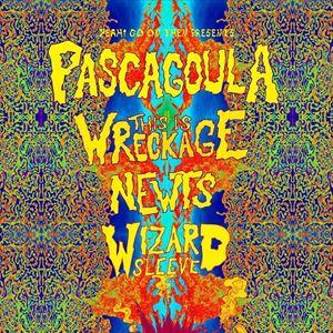 Pascugoula, TiW, Newts, Wizard Sleeve.