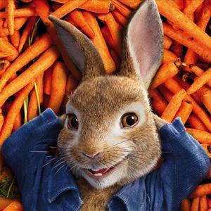 Peter Rabbit & The Great Bunny Bop! SATURDAY
