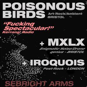 Poisonous Birds + MXLX + Iroquois (Noise/Art Rock)