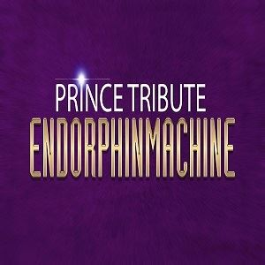 Prince Tribute - Endorphinmachine