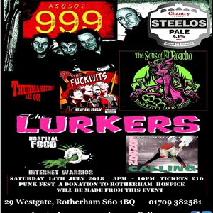 PUNK FEST  999  LURKERS & MORE