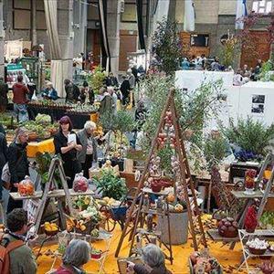 RHS London Autumn Garden Show - Late