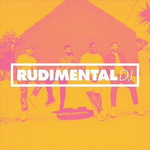 Rudimental DJ Set