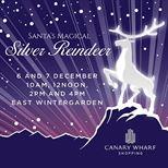 Santa's Magical Silver Reindeer Show