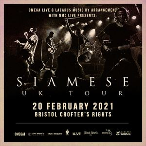 SIAMESE AT THE CROFTERS RIGHTS, BRISTOL