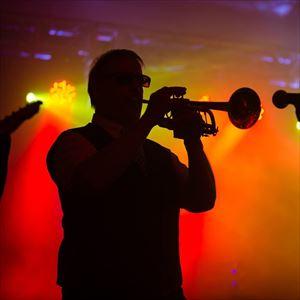 Ska Face (10 Pieces Ska Band) - Milton Keynes