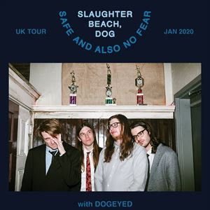 SLAUGHTER BEACH, DOG