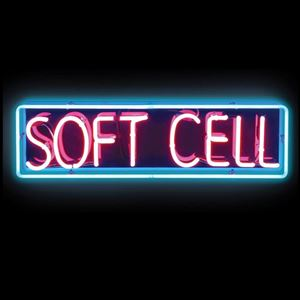 Soft Cell - One Night One Final Time