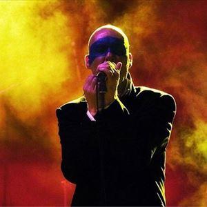 Stipe: REM Tribute Band