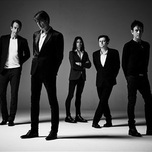 Image result for suede band 20199
