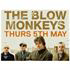 THE BLOW MONKEYS LIVE