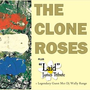 The Clone Roses + Laid