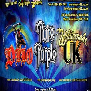 The Deep Purple Family Tree