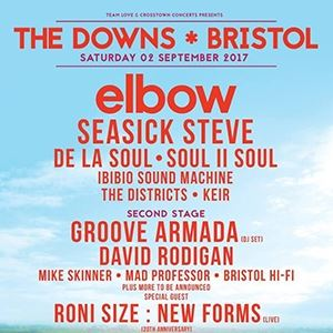 The Downs Festival 2017